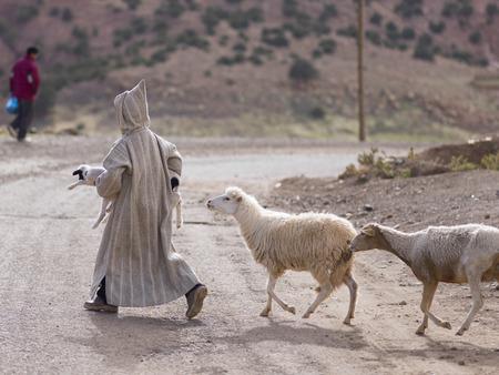 羊飼いと羊の未舗装の道路、アトラス山脈、モロッコを横断