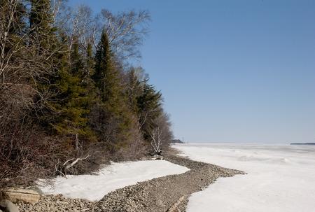 lake winnipeg: Trees at the lakeside, Lake Winnipeg, Hecla Grindstone Provincial Park, Manitoba, Canada Stock Photo