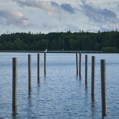 lake winnipeg: Wooden posts in the lake, Lake Winnipeg, Riverton, Hecla Grindstone Provincial Park, Manitoba, Canada