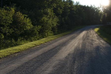 Trees along a gravel road, Wasagaming, Riding Mountain National Park, Manitoba, Canada