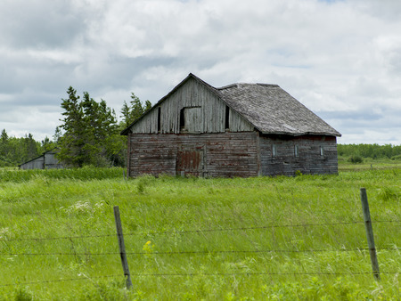 Old abandoned barn in a field, Manitoba, Canada photo