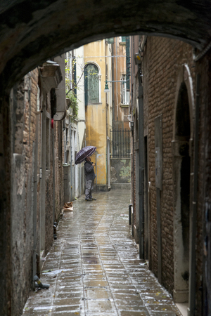 rain wet: Man standing on wet street during rain, Venice, Veneto, Italy