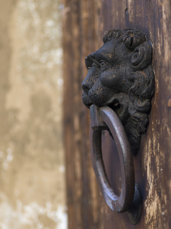 Close-up of antique door knocker, Florence, Tuscany, Italy