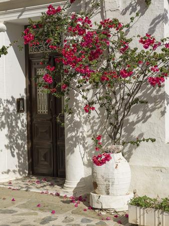 entranceway: Doorway of house, Thessalia Sterea Ellada, Skopelos, Greece