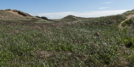 잔디 언덕, 그린 게 이블 스, 캐빈, 프린스 에드워드 아일랜드 국립 공원, 프린스 에드워드 아일랜드, 캐나다의 경치를 볼 스톡 콘텐츠