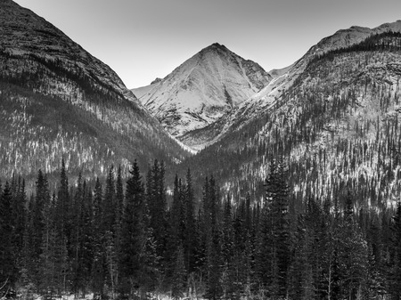 View of trees with snowcapped mountain in the background, Alaska Highway, Northern Rockies Regional Municipality, British Columbia, Canada