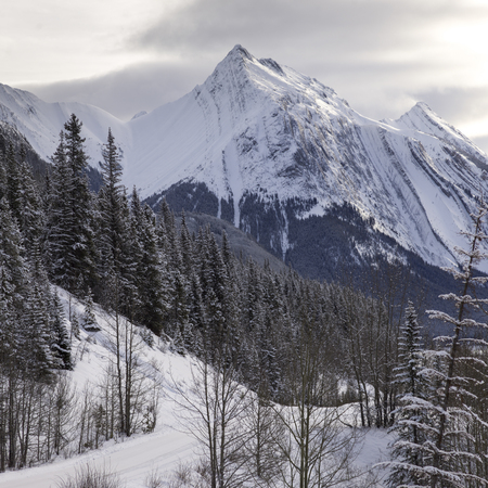 Scenic view of snowcapped mountain range, Improvement District No. 12, Maligne Lake, Jasper, Jasper National Park, Alberta, Canada 免版税图像
