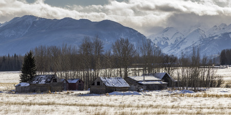 covered fields: Abandoned Farmhouses in snow covered field, Highway 16, Yellowhead Highway, British Columbia, Canada