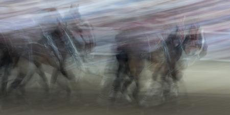 calgary stampede: Blurred motion of chuckwagon racing at the annual Calgary Stampede, Calgary, Alberta, Canada