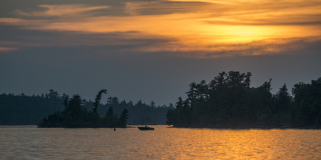 View of trees at lakeside during sunset, Lake of The Woods, Ontario, Canada