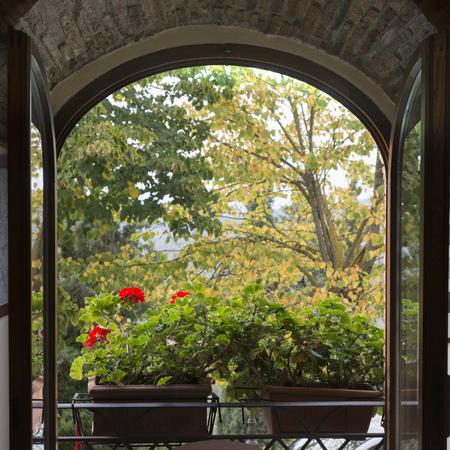 Open window showing flowers in window box , Radda in Chianti, Tuscany, Italy Stock Photo