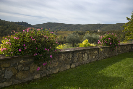 Scenic view of stone retaining wall at tourist resort, Gaiole In Chianti, Tuscany, Italy Stok Fotoğraf