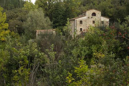 Houses amidst trees in village, Chianti, Tuscany, Italy Stock Photo