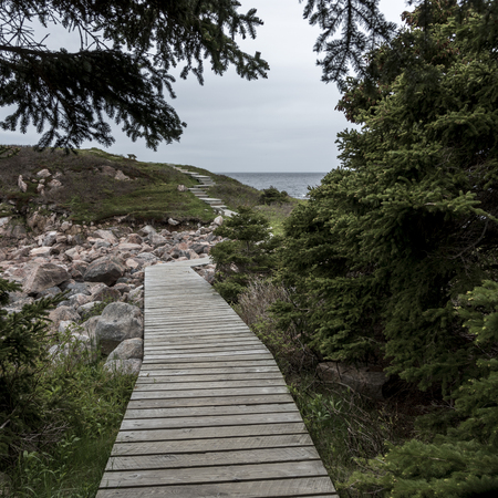 Boardwalk at coast, Ingonish, Cape Breton Island, Nova Scotia, Canada