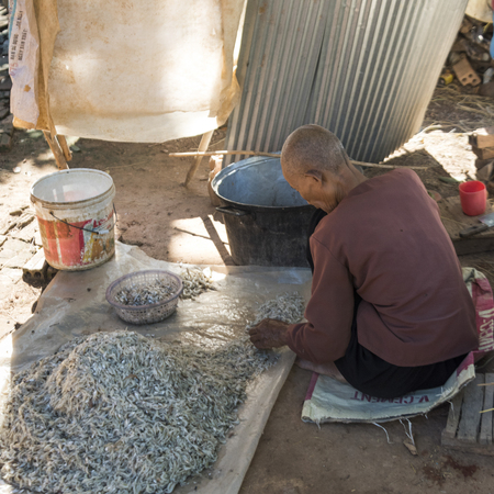 Man arranging seafood on a tarp in Siem Reap, Cambodia