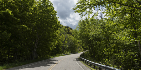 Empty road amidst trees in forest, Pleasant Bay, Cape Breton Highlands National Park, Cape Breton Island, Nova Scotia, Canada