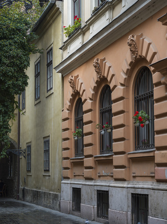 Windows with flower boxes, Budas Castle District, Budapest, Hungary