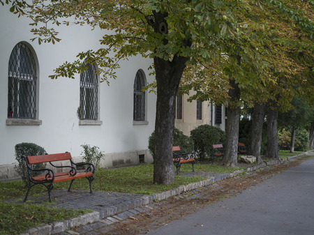 Trees and benches along roadway, Budas Castle District, Budapest, Hungary