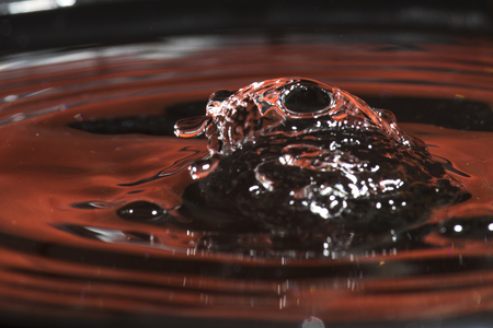 Close-up of drop falling into water, Kenora, Lake of the Woods, Ontario, Canada