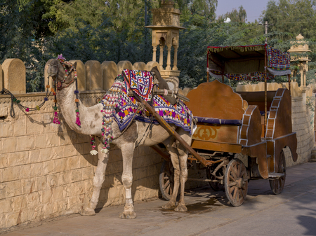 Camel drawn carriage at roadside, Gadsisar Lake, Jaisalmer, Rajasthan, India