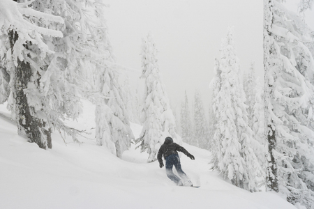 Tourist snowboarding in Sun Peaks Resort, Sun Peaks, Kamloops, British Columbia, Canada
