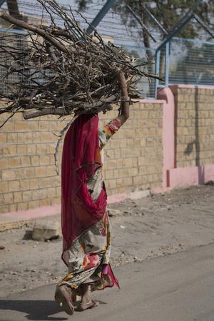 Woman carrying bundle of firewood on her head, Kishan Ghat, Jaisalmer, Rajasthan, India Stock Photo