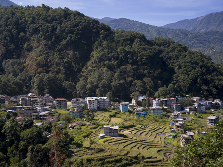 Elevated view of houses in a village, Sikkim, India