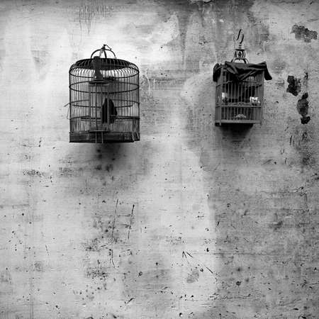 Photographs of bird cages in Mainland China
