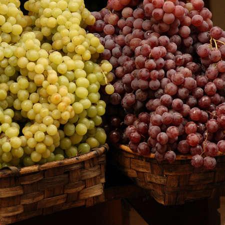 Siena, Italy - Tuscany Stock Photo - 179932