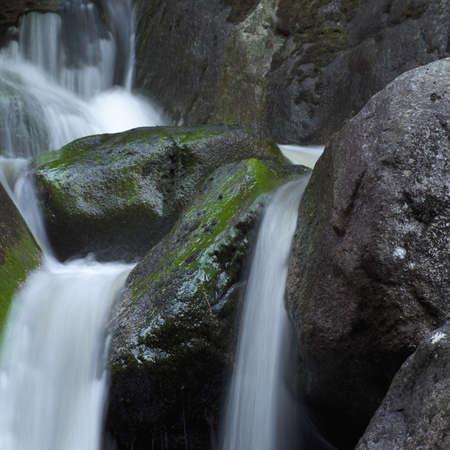 backwoods: Squamish - Vancouver, British Columbia