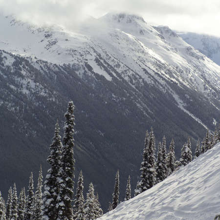 adventurous: Whistler, Canada - winter