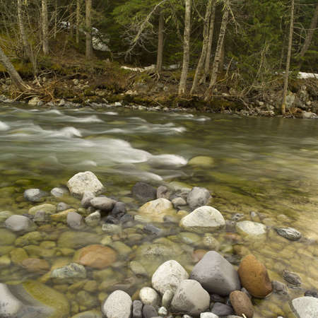 Nature trails in British Columbia. Canada Stock Photo