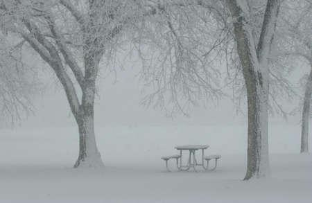 Winter Scenes - Canada