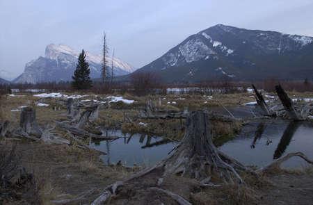 mud and snow: Vermillion Lake, Alberta, Canada
