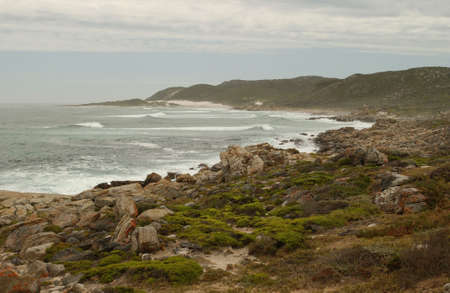 cape of good hope: Cape of Good Hope - South Africa Stock Photo
