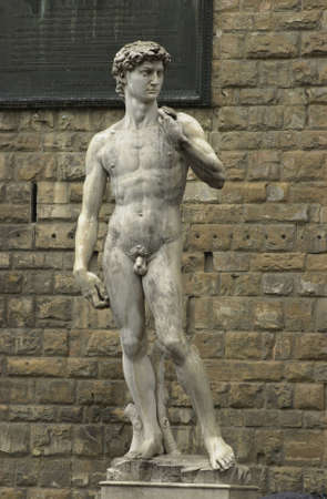 nudes: Statue of David by Michelangelo - Florence, Italy