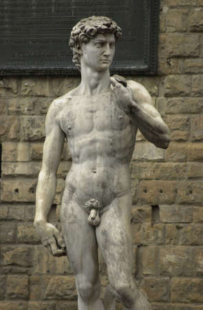 naked statue: Statue of David by Michelangelo - Florence, Italy