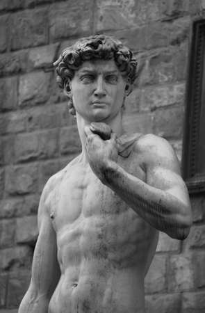 effigy: Statue of David by Michelangelo - Florence, Italy