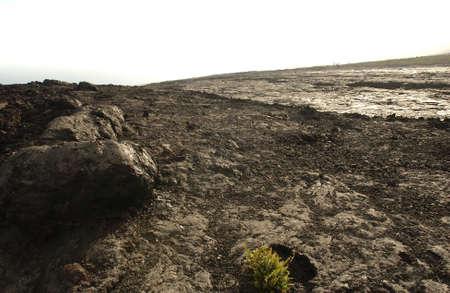 paisaje lunar: Parque Nacional Volc�n - Isla Grande de Hawai - lava endurecida