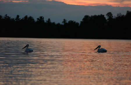 Lake Photography photo