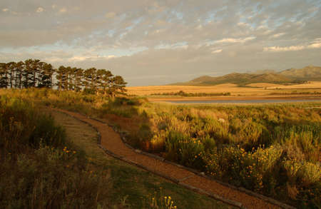 Coastal Landscape - South Africa photo