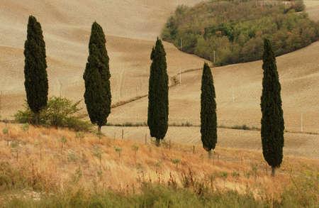 Landscapes - Tuscany, Italy Stock Photo - 184756