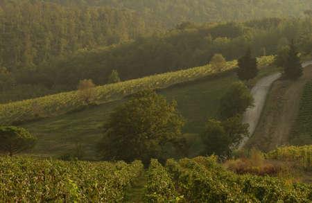 Landscapes - Tuscany, Italy Stock Photo - 184773