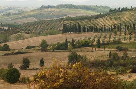 Landscapes - Tuscany, Italy photo
