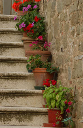 steps and staircases: Tuscany, Italy Stock Photo