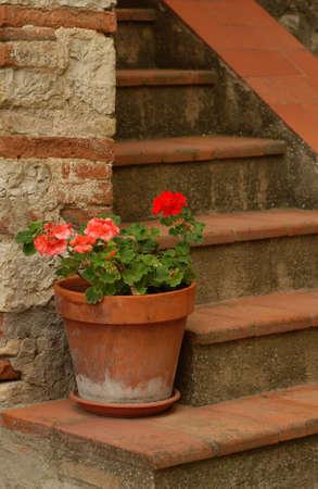 chianti: Radda in Chianti, Tuscany, Italy