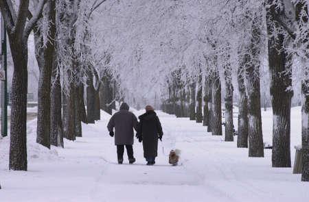 winter woman: Winnipeg Manitoba, Canada Winter Scenes