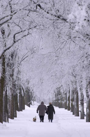 Winnipeg Manitoba, Canada Winter Scenes photo