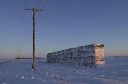 winter in Manitoba, prairie scene Stock Photo - 186264