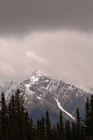 snow capped: Snow Capped Mountain Peak, Jasper National Park, Canada